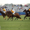 Bridgehampton Polo 2012: Luxury and Horse Sport Ride Onto the Field