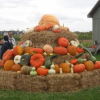 Hamptons Thanksgiving 2013 – Best Ways to Enjoy and Escape Your Family