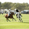 GAME ON!  BRIDGEHAMPTON POLO CLUB OPENS ITS 2013 SEASON