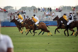 Bridgehampton Polo in action - photo by R. Cole for Rob Rich