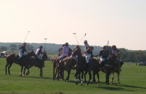 bridgehampton polo hampton cup